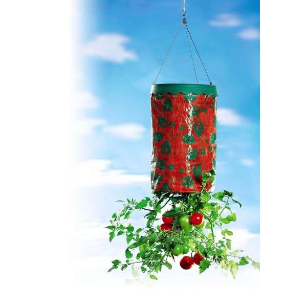 Pflanz Zauber Blumenampel Blumentopf hängend Hängeblumentopf Hänge Tomaten